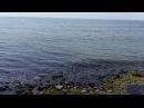 Жесткий слив септика в море Новороссийск. Рядом купаются граждане.