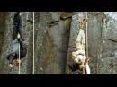 Видео к фильму «Лара Крофт: Расхитительница гробниц 2 – Колыбель жизни»