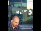 zebra_davidenko video