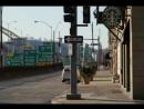 питтсбург пенсильвания зима 2013 утки гуси центр мосты дома прогулка ностальгия