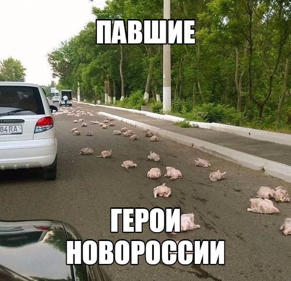Грызлов обвиняет Украину в нежелании обсуждать политическую часть Минских соглашений - Цензор.НЕТ 7684