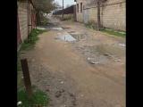 Такая вот красота на улицах Дербента.