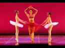 Bayadere Variation Manu Fouette Russian Classic Ballet 2015