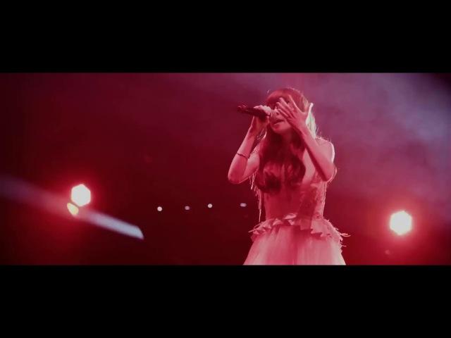 Aimer - Brave Shine ~ Live Tour DAWN
