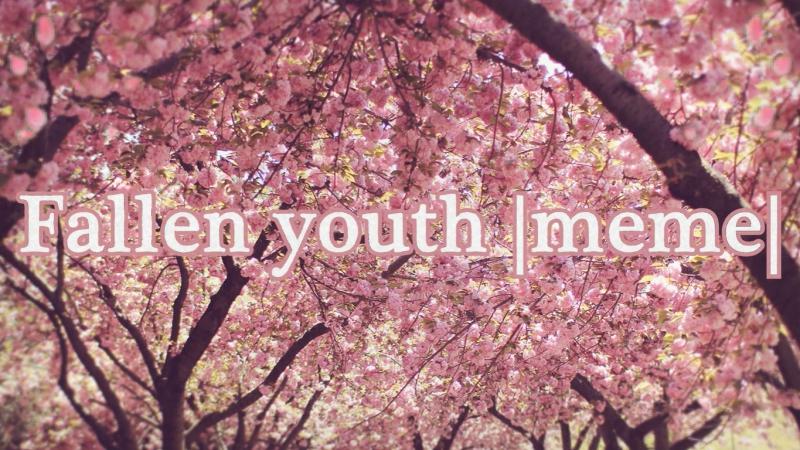 Fallen youth |meme|