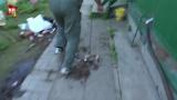 Появилось видео задержания террористов со взрывчаткой «мать Сатаны»