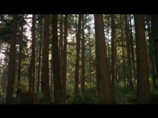 Звёздные врата: ЗВ-1 Сезон 1 Серии 12 Зов крови 10 октября 1997 Год