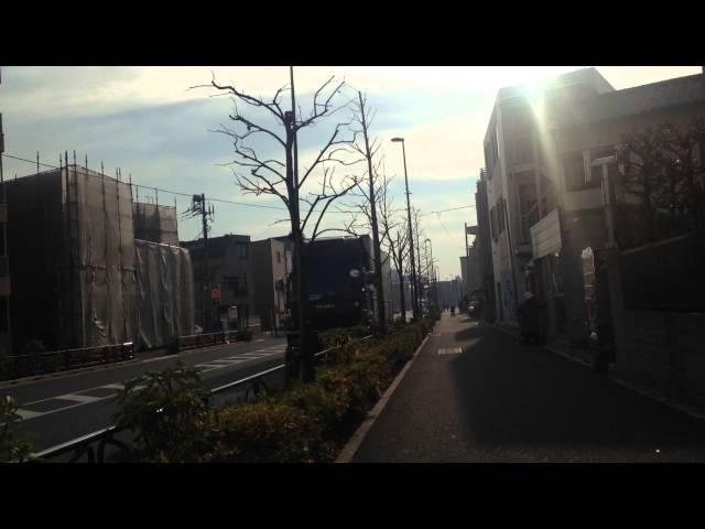 Япония моими глазами. Скучаю ли я по России?