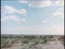 ✩ Моро едет к морю Игла осень 1987 Виктор Цой группа Кино