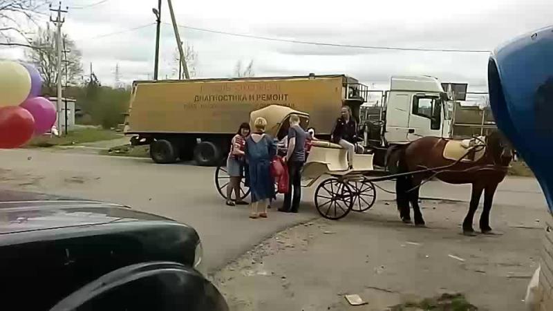 ДР Насти. Карета с лошадкой