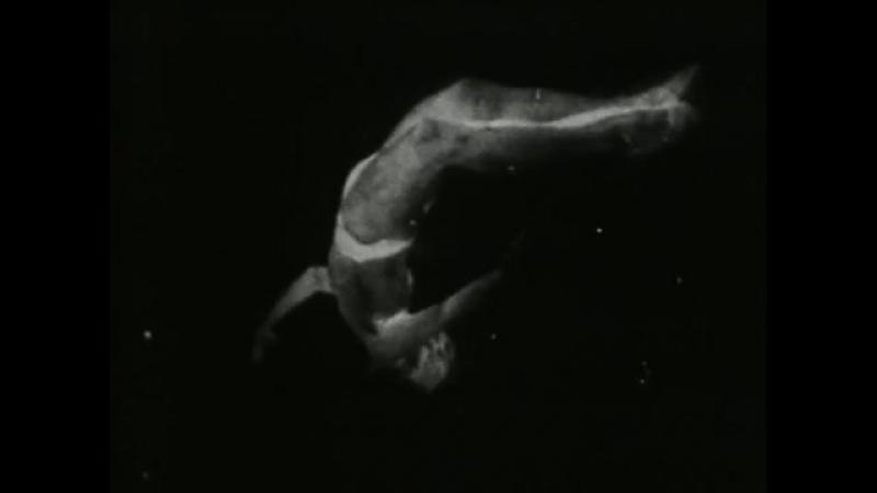 Майя Дерен - Неотступный взгляд ночи / Maya Deren - The Very Eye of Night (1958,США)