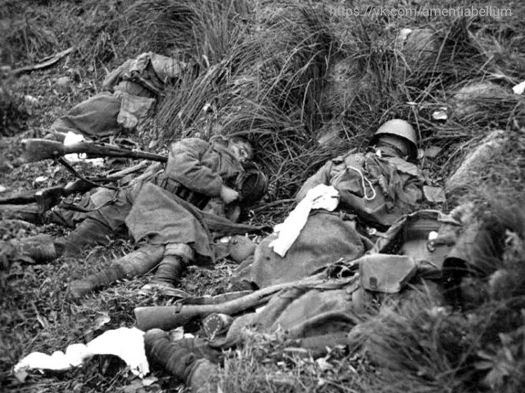 Советские солдаты погибшие в контратаке. 1941 год