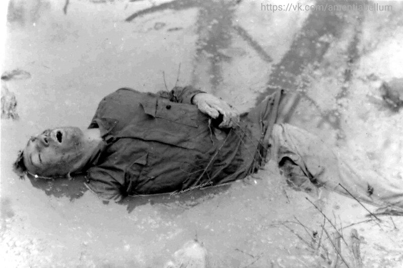 Погибший красноармеец. Карелия. 1941 год.