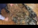 Охота на гуся-непромакаемый чехол для лежачей засидки. 1