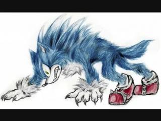 Sonic the werehog pics