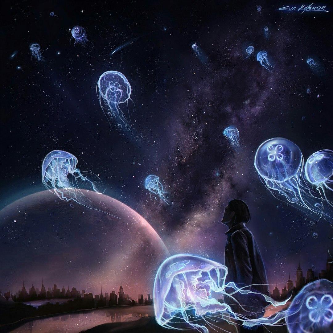 Звёздное небо и космос в картинках - Страница 4 PL6KvC2vtwM