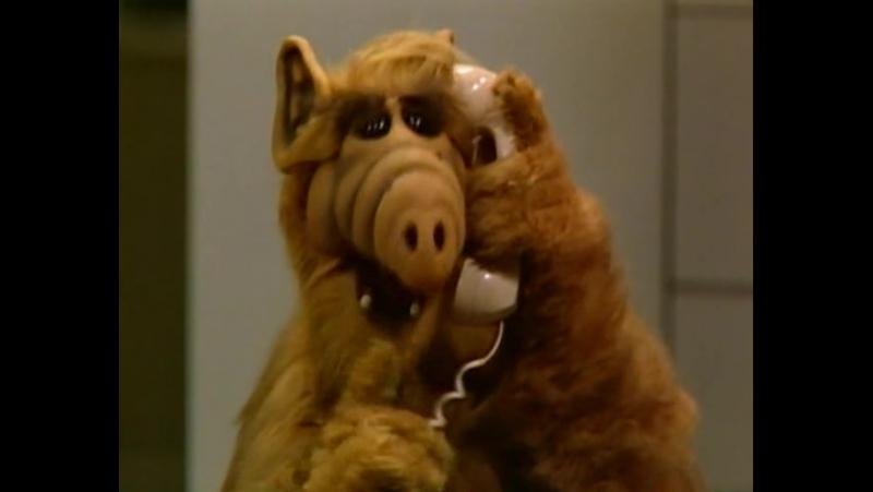 Alf 1x05 - Guardando