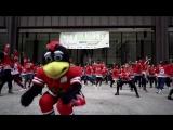 Blackhawks Flash Mob at Daley Plaza. August 23rd, 2017