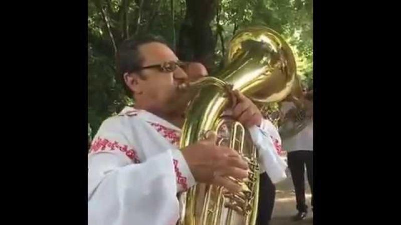 Fanfara de la Cozmesti - Muzici si tradiții in Cișmigiu 2016