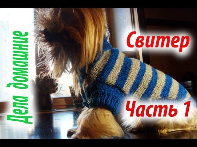 Свитер для собаки Часть1 Одежда для собак своими руками на канале Дела домашние