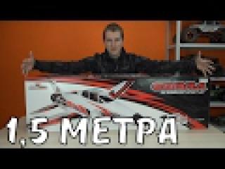 Самолет 1,5 метра на 8S Lipo .... Cobra Sport Jet