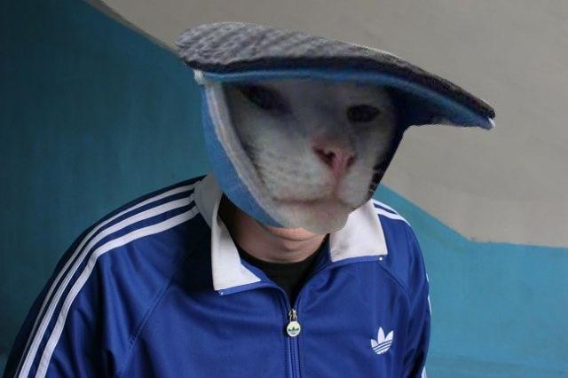 Кот: Когда играл с тапками и доигрался