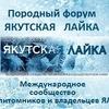 Породный форум Якутская Лайка