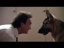 К-9 Собачья работа 1989
