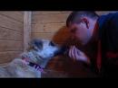 Этап 2 Приучение собаки к близкому контакту №2