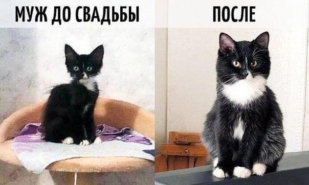 Кто с этим согласен )))