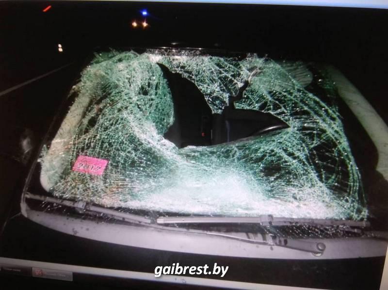 Первая жертва осени: в Пинском районе погиб пешеход