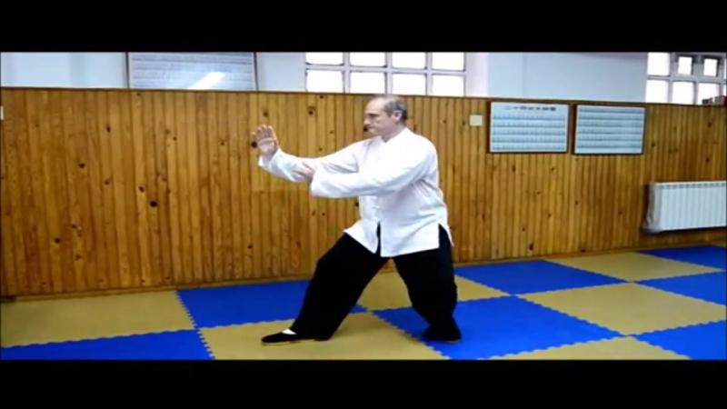 José Gago Garrido выполняет первую часть 85 формы Yang Taichi