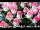 S_dnem_rojdeniya