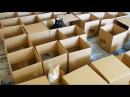 AMEOW ZING 50 Box Cat Maze