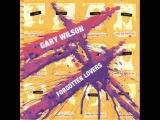 Gary Wilson - Soul Travel