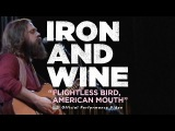 Iron and Wine - Flightless Bird, American Mouth [LIVE PERFORMANCE VIDEO]