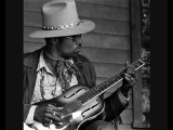 Taj Mahal  The Celebrated Walkin' Blues