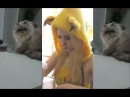 EVIL CAT DROPS GLASS - PIKACHU PARODY Gato Malo Parody Thug Life