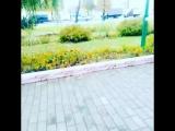 Артурэска#парк#Еврейский#блатняк!