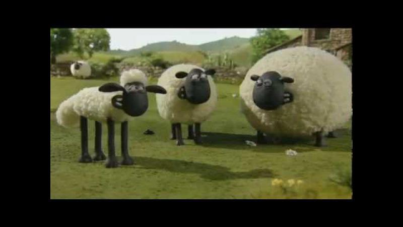 Барашек Шон S1E16 - Художества / Shaun the Sheep - Still Life