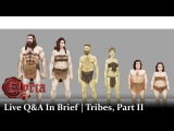 Chronicles of Elyria Q&ampA Tribes, Part II In Brief