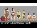Chronicles of Elyria Q A | Tribes, Part II | In Brief