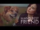 Man's Best Friend | Multifandom