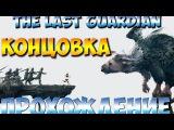 The Last Guardian Концовка Прохождение Часть 14 PS4 1080p
