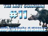 The Last Guardian Прохождение Часть 11 PS4 1080p