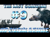 The Last Guardian Прохождение Часть 9 PS4 1080p