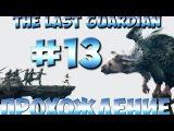 The Last Guardian Прохождение Часть 13 PS4 1080p