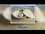 عند شاطئ البحر - на берегу моря