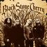 Black Stone Cherry - Tired of the Rain