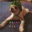 Frankie Cosmos - School